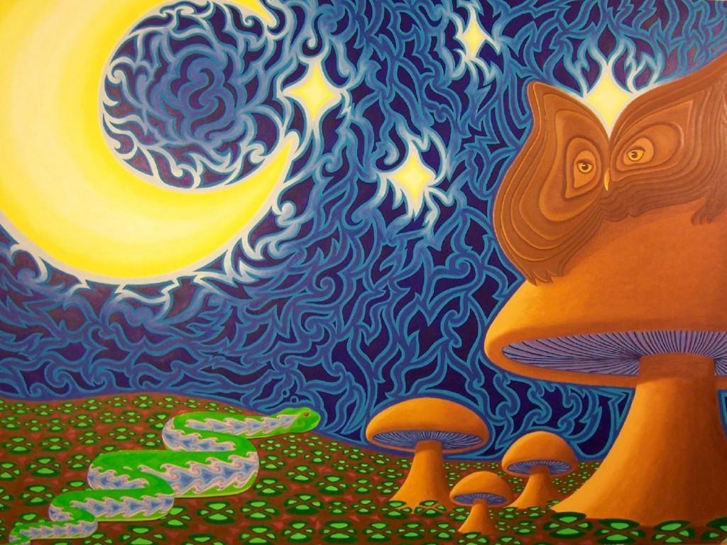 Ken Zeltakailns - She owl(1)